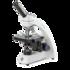 Бинокулярный микроскоп BioBlue 4260 Euromex (Нидерланды)